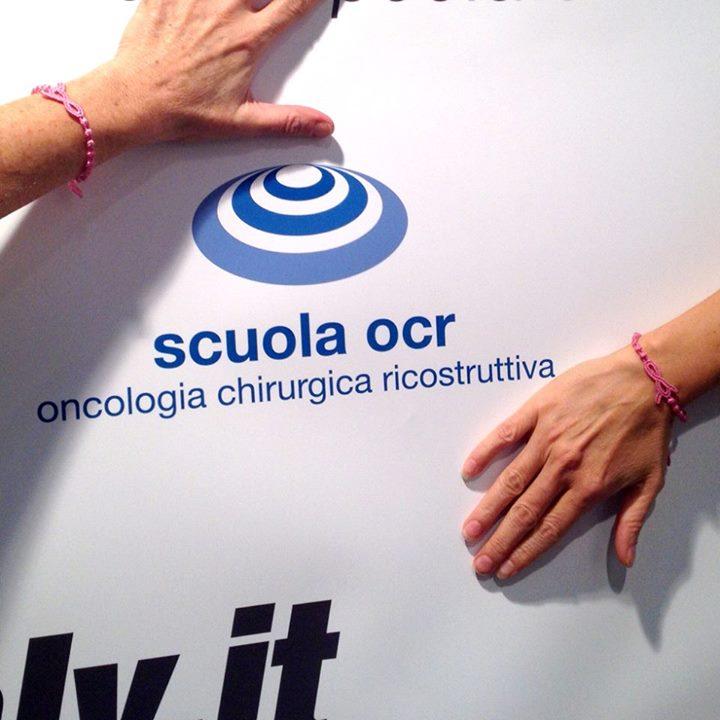 23-24.11.2013 – BRA Day Italy – Scuola OCR, presso Fiera di Santa Caterina a Gorgonzola (MI)