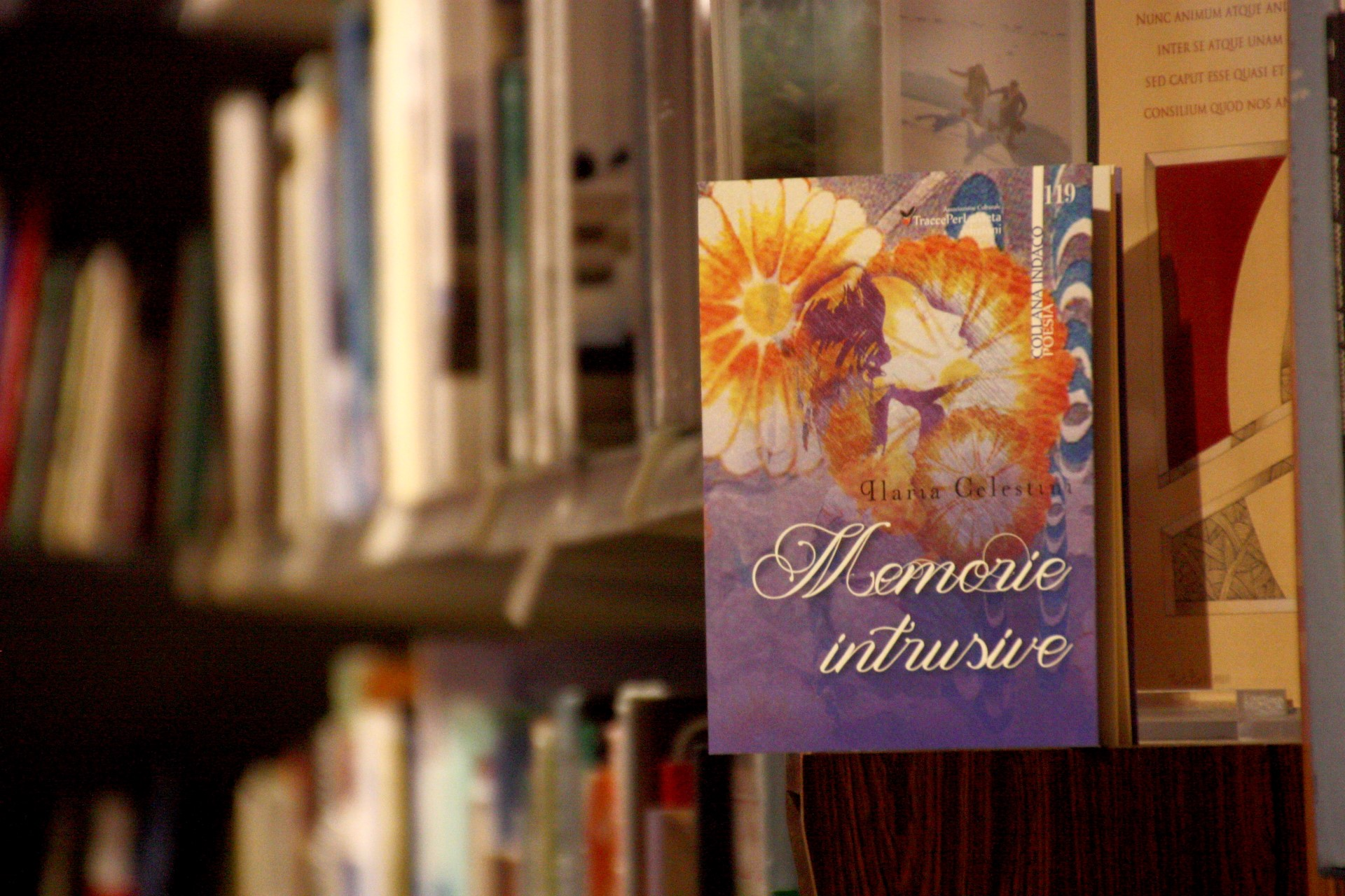 Memorie Intrusive di Ilaria Celestini – Recensione di Luciano Domenighini